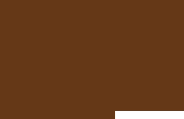Sams Field [logo]